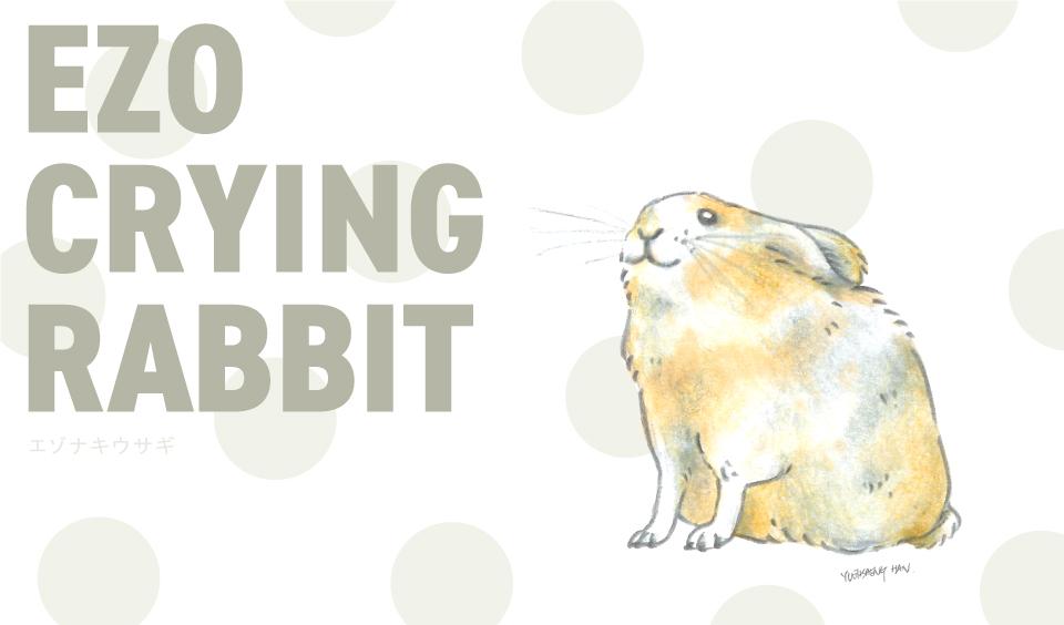 Ezo-Crying-Rabbit